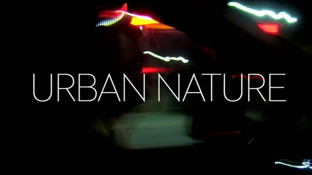 Visit Sweden – Urban Nature